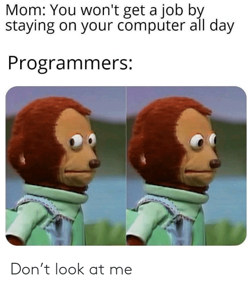 Computer, Mom, and Job: Mom: You won't get a job by  staying on your computer all day  Programmers: Don't look at me