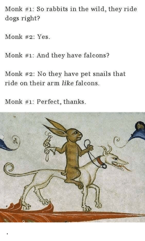 monk: Monk #1: So rabbits in the wild, they ride  dogs right?  Monk #2: Yes  Monk #1: And they have falcons?  Monk #2: No they have pet snails that  ride on their arm like falcons  Monk #1: Perfect, thanks .