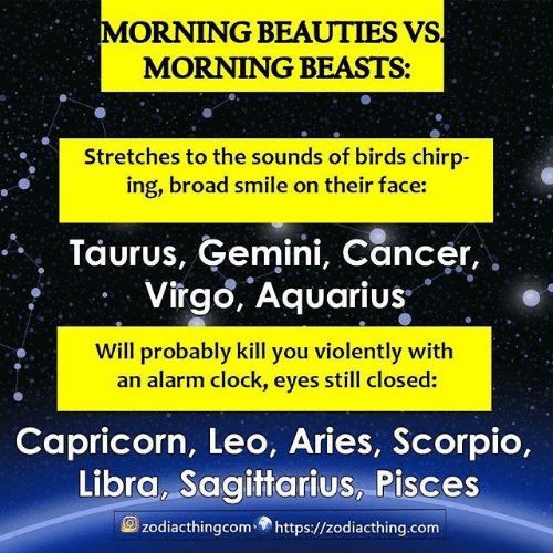 broad: MORNING BEAUTIES VS  MORNING BEASTS:  Stretches to the sounds of birds chirp-  ing, broad smile on their face:  Taurus, Gemini, Cancer,  Virgo, Aquarius  Will probably kill you violently with  an alarm clock, eyes still closed:  Capricorn, Leo, Aries, Scorpio,  Libra, Sagittarius, Pisces  zodiacthingcomhttps://zodiacthing.com