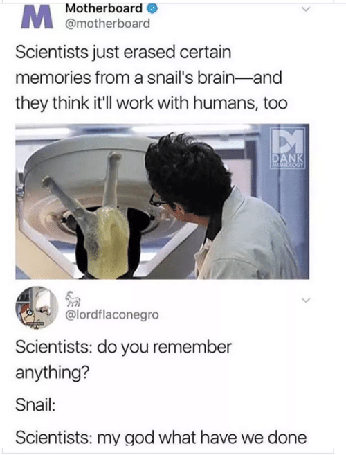 God, Work, and Brain: Motherboard  @motherboard  Scientists just erased certain  memories from a snail's brain-and  they think it'l work with humans, too  PM  @lordflaconegro  Scientists: do you remember  anything?  Snail:  Scientists: my god what have we done