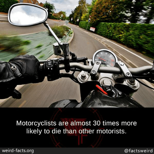 Facts, Memes, and Weird: Motorcyclists are almost 30 times more  likely to die than other motorists.  weird-facts.org  @factsweird