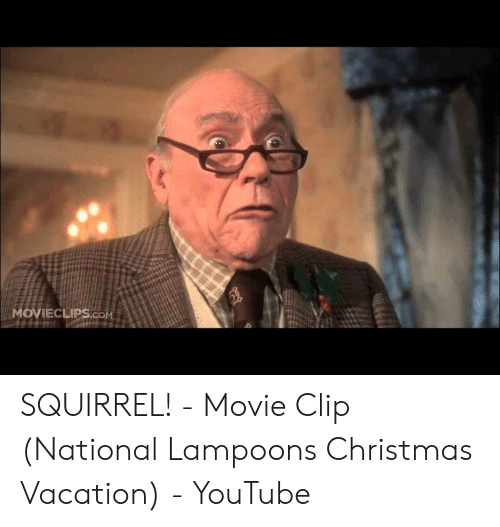 Christmas Vacation Squirrel.Movieclipscom Squirrel Movie Clip National Lampoons