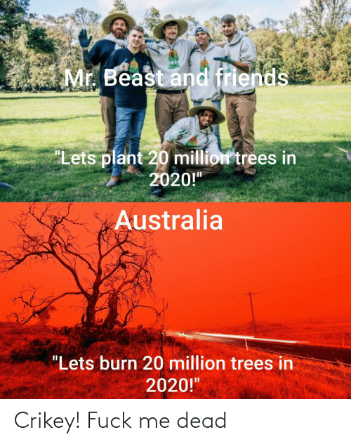 """Trees: Mr. Beast and friends  """"Lets plant 20 million trees in  2020!""""  Australia  """"Lets burn 20 million trees in  2020!"""" Crikey! Fuck me dead"""