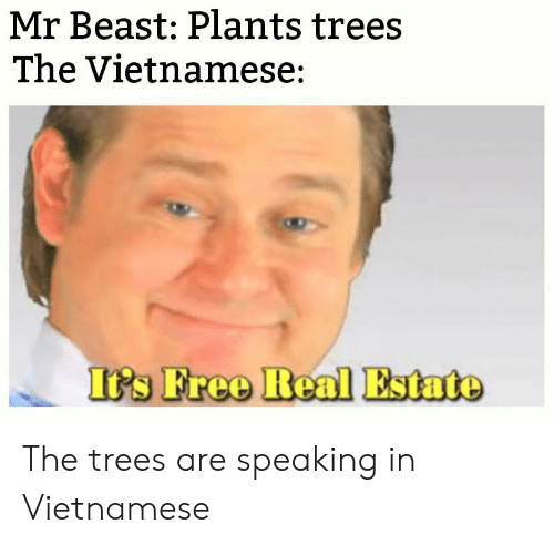 estate: Mr Beast: Plants trees  The Vietnamese:  It's Free Real Estate The trees are speaking in Vietnamese