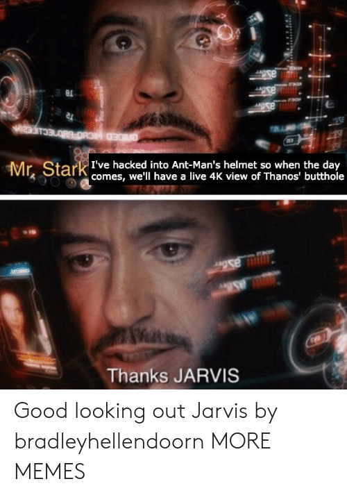 Dank, Memes, and Target: Mr Stark te hacke to Ant-Man's helmet so when tueday  comes, we'll have a live 4K view of Thanos' butthole  Thanks JARVIS Good looking out Jarvis by bradleyhellendoorn MORE MEMES