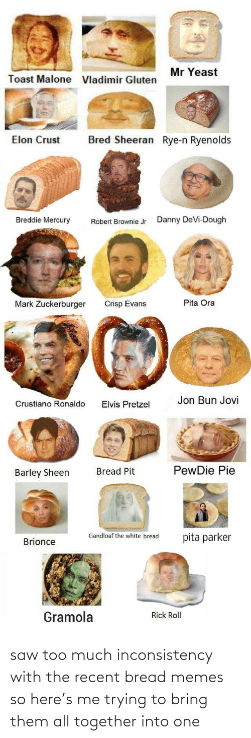 elvis: Mr Yeast  Toast Malone  Vladimir Gluten  Bred Sheeran Rye-n Ryenolds  Elon Crust  Breddie Mercury  Danny DeVi-Dough  Robert Brownie Jr  Pita Ora  Mark Zuckerburger  Crisp Evans  Jon Bun Jovi  Crustiano Ronaldo  Elvis Pretzel  PewDie Pie  Bread Pit  Barley Sheen  Gandloaf the white bread  pita parker  Brionce  Gramola  Rick Roll saw too much inconsistency with the recent bread memes so here's me trying to bring them all together into one