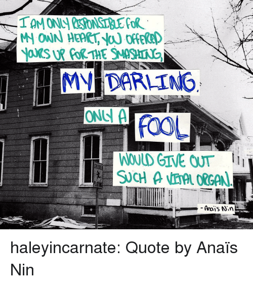 Tumblr, Blog, and Http: MV DARLING  ONS A  FOOL  WOULD GIVE OUT haleyincarnate:  Quote by  Anaïs Nin