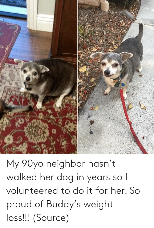 do it: My 90yo neighbor hasn't walked her dog in years so I volunteered to do it for her. So proud of Buddy's weight loss!!! (Source)