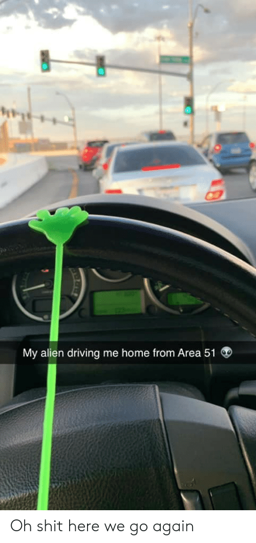 Driving, Shit, and Alien: My alien driving me home from Area 51 Oh shit here we go again