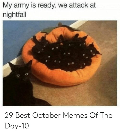 Memes, Army, and Best: My army is ready, we attack at  nightfall 29 Best October Memes Of The Day-10