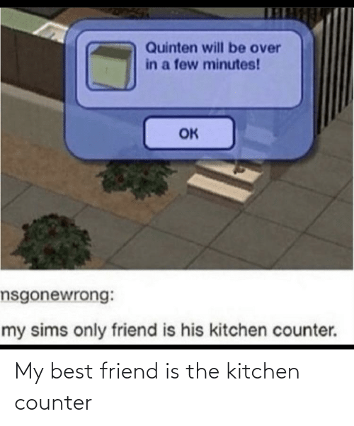 best friend: My best friend is the kitchen counter