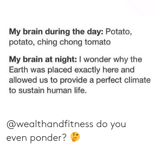 Gym, Life, and Brain: My brain during the day: Potato,  potato, ching chong tomato  My brain at night: I wonder why the  Earth was placed exactly here and  allowed us to provide a perfect climate  to sustain human life. @wealthandfitness do you even ponder? 🤔