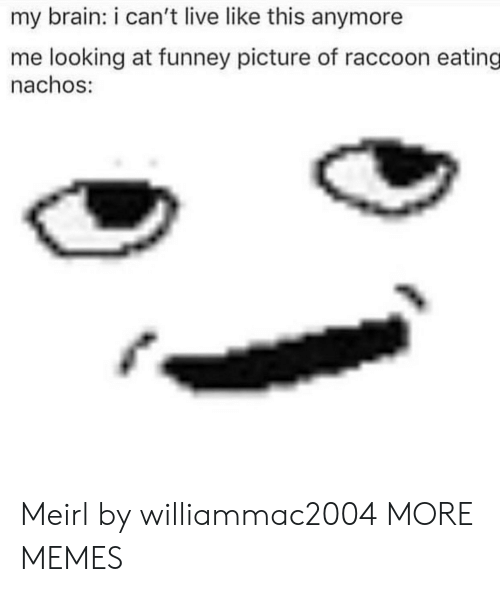 nachos: my brain: i can't live like this anymore  me looking at funney picture of raccoon eating  nachos: Meirl by williammac2004 MORE MEMES