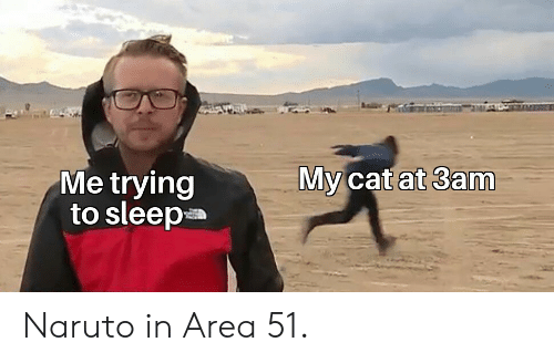 area 51: My cat at 3am  Me trying  to sleep Naruto in Area 51.