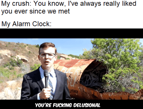 Crush: My crush: You know, I've always really liked  you ever since we met  My Alarm Clock:  FEP  YOU'RE FUCKING DELUSIONAL