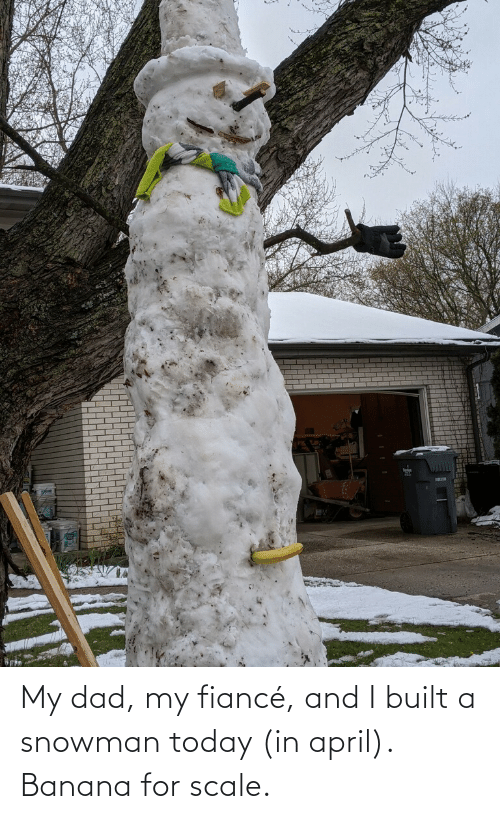 Banana: My dad, my fiancé, and I built a snowman today (in april). Banana for scale.