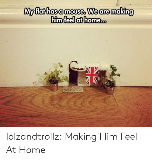 Tumblr, Blog, and Home: My flat has a mouse, We are making  him feel at home..o lolzandtrollz:  Making Him Feel At Home