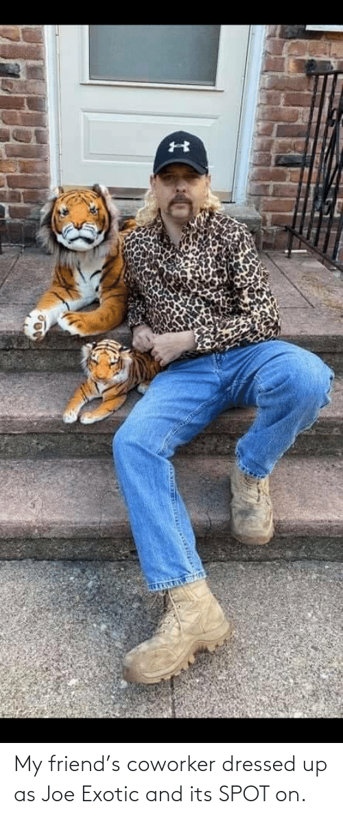 my friend: My friend's coworker dressed up as Joe Exotic and its SPOT on.