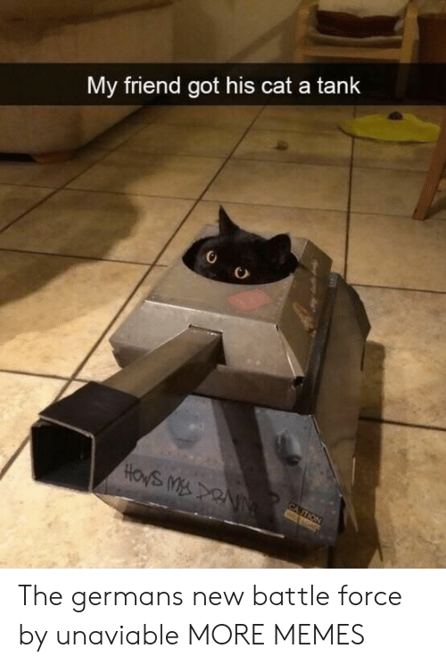 Dank, Memes, and Target: My friend got his cat a tank  CA TION  wALOND The germans new battle force by unaviable MORE MEMES