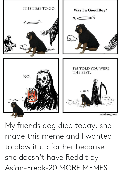 Asian: My friends dog died today, she made this meme and I wanted to blow it up for her because she doesn't have Reddit by Asian-Freak-20 MORE MEMES