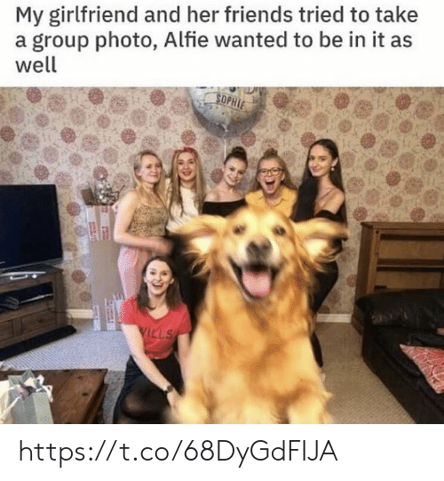 Friends, Memes, and Girlfriend: My girlfriend and her friends tried to take  a group photo, Alfie wanted to be in it as  well  SOPHIE  VILLS https://t.co/68DyGdFIJA