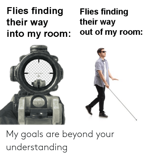 beyond: My goals are beyond your understanding