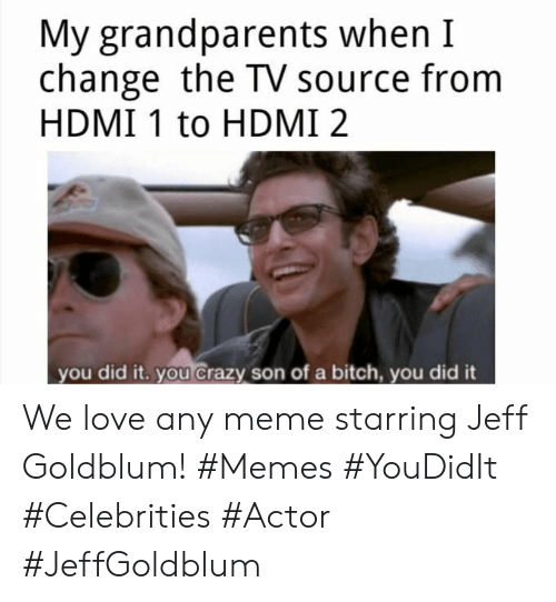 Bitch, Crazy, and Love: My grandparents when I  change the TV source from  HDMI 1 to HDMI 2  you did it. you crazy son of a bitch, you did it We love any meme starring Jeff Goldblum! #Memes #YouDidIt #Celebrities #Actor #JeffGoldblum