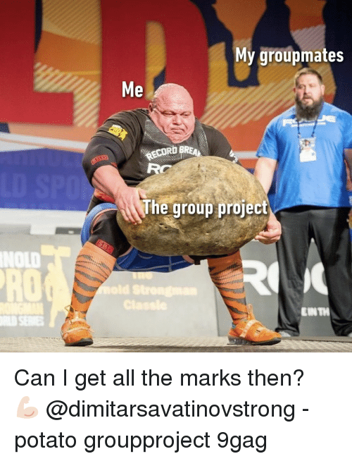 9gag, Memes, and Potato: My groupmates  Me  RECORD  he group projec  NOLD  RO  EIN TH Can I get all the marks then?⠀ 💪🏻 @dimitarsavatinovstrong⠀ -⠀ potato groupproject 9gag