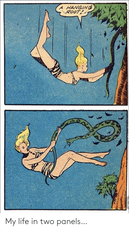my life: My life in two panels…