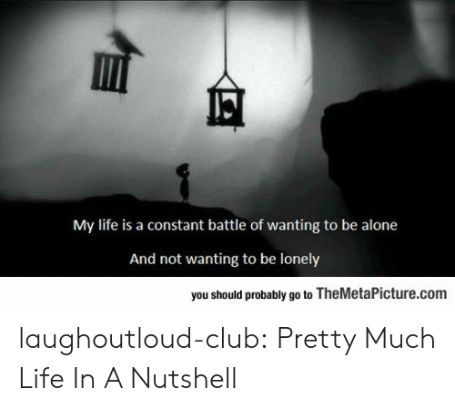 Being Alone, Club, and Life: My life is a constant battle of wanting to be alone  And not wanting to be lonely  you should probably go to TheMetaPicture.com laughoutloud-club:  Pretty Much Life In A Nutshell
