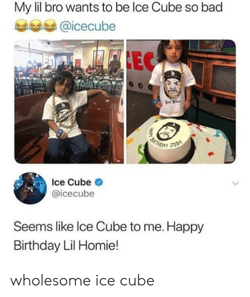 Bad, Birthday, and Homie: My lil bro wants to be lce Cube so bad  @icecube  FLEC  BRTHD  JOSH  Ice Cube  @icecube  Seems like Ice Cube to me. Happy  Birthday Lil Homie! wholesome ice cube