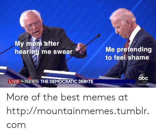 democratic: My mom after  hearing me swear  Me pretending  to feel shame  abc  LIVE bNEWSI THE DEMOCRATIC DEBATE  More of the best memes at http://mountainmemes.tumblr.com