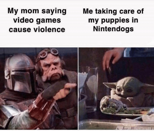 Puppies, Star Wars, and Video Games: My mom saying  video games  cause violence  Me taking care of  my puppies in  Nintendogs