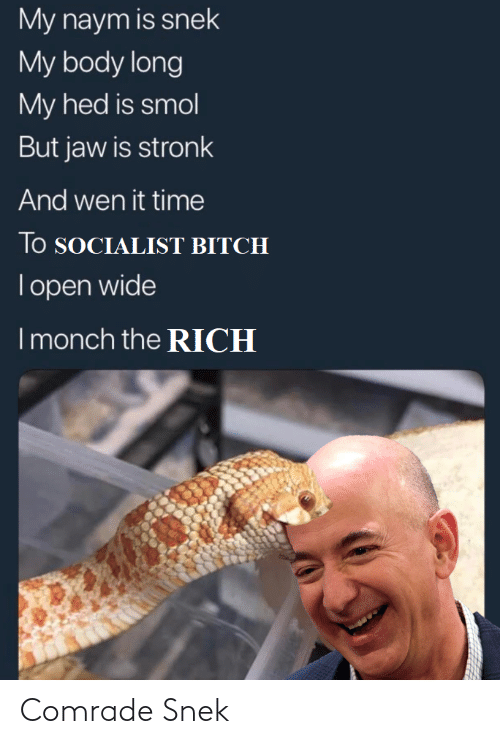 Socialist: My naym is snek  My body long  My hed is smol  But jaw is stronk  And wen it time  lo SOCIALIST BITCH  Topen wide  I monch the RICH Comrade Snek
