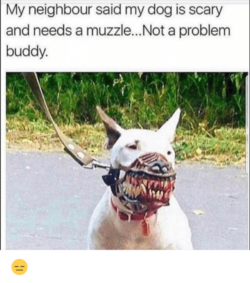 Funny, Dog, and Buddy: My neighbour said my dog is scary  and needs a muzzle...Not a problem  buddy 😑