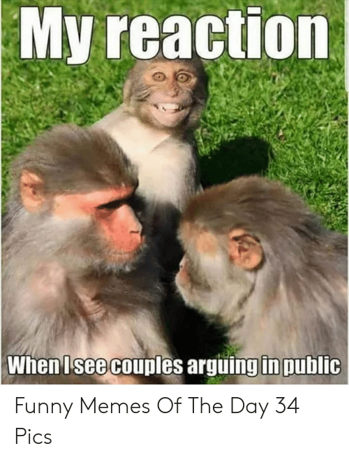 arguing: My reaction  When Isee couples arguing in public Funny Memes Of The Day 34 Pics