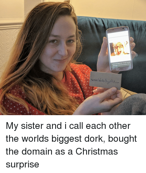 Christmas, World, and Domain: My sister and i call each other the worlds biggest dork, bought the domain as a Christmas surprise
