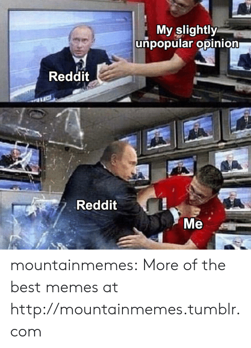Memes, Reddit, and Tumblr: My slightly  unpopular opinion  Reddit  Reddit  Ме mountainmemes:  More of the best memes at http://mountainmemes.tumblr.com