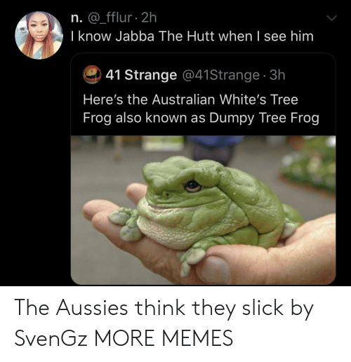 Dank, Jabba the Hutt, and Memes: n. @_fflur 2h  I know Jabba The Hutt when I see him  41 Strange @41Strange 3h  Here's the Australian White's Tree  Frog also known as Dumpy Tree Frog The Aussies think they slick by SvenGz MORE MEMES