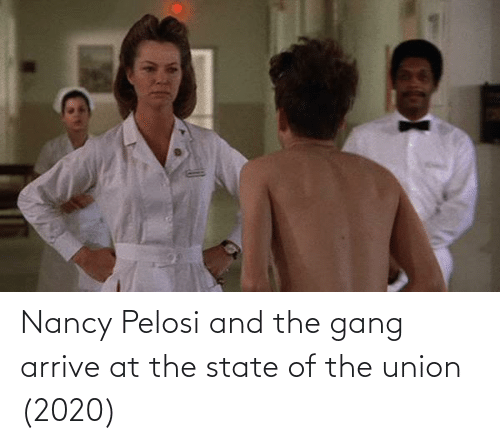 Nancy Pelosi: Nancy Pelosi and the gang arrive at the state of the union (2020)