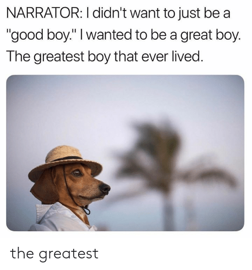"""Boy That: NARRATOR: I didn't want to just be a  """"good boy."""" I wanted to be a great boy.  The greatest boy that ever lived. the greatest"""