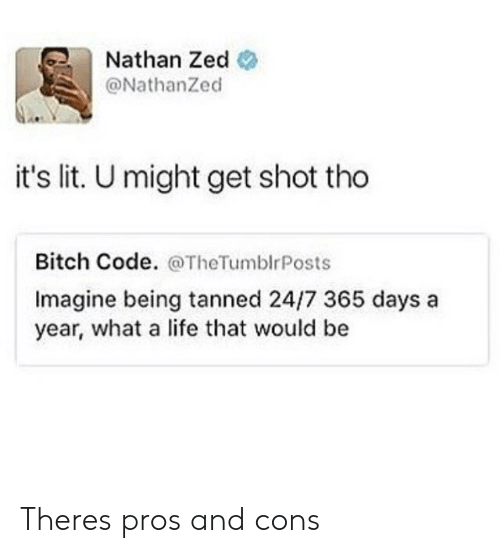 Bitch, It's Lit, and Life: Nathan Zed  @NathanZed  it's lit. U might get shot tho  Bitch Code. @TheTumblrPosts  Imagine being tanned 24/7 365 days a  year, what a life that would be Theres pros and cons
