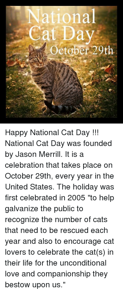 """Happy National Cat Day: National  Cat Day  October 20th Happy National Cat Day !!!  National Cat Day was founded by Jason Merrill. It is a celebration that takes place on October 29th, every year in the United States. The holiday was first celebrated in 2005 """"to help galvanize the public to recognize the number of cats that need to be rescued each year and also to encourage cat lovers to celebrate the cat(s) in their life for the unconditional love and companionship they bestow upon us."""""""