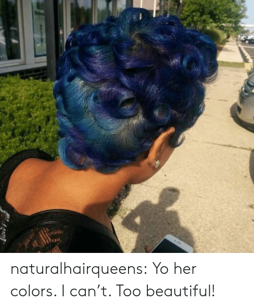 Beautiful, Tumblr, and Yo: naturalhairqueens:  Yo her colors. I can't. Too beautiful!