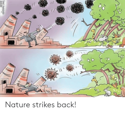Back: Nature strikes back!