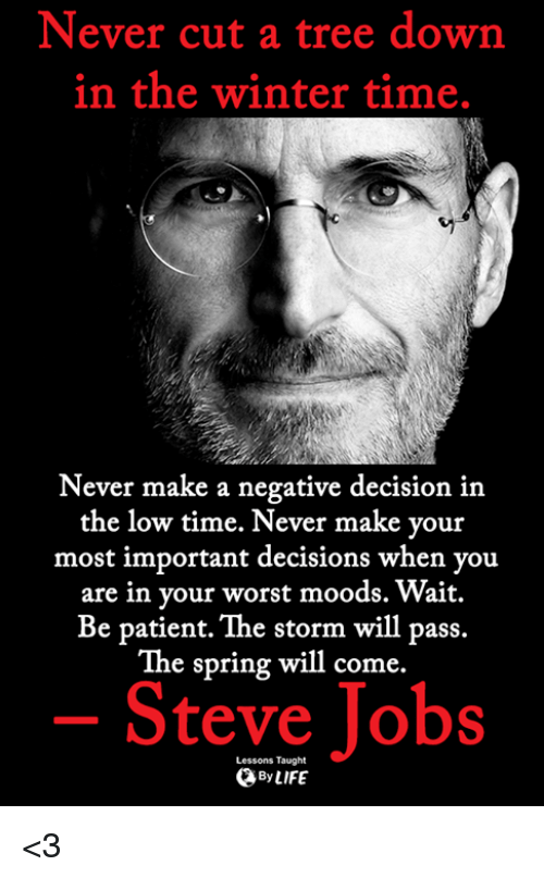 Memes, Steve Jobs, and Winter: Never cut a tree down  in the winter time.  Never make a negative decision in  the low time. Never make your  most important decisions when you  are in your worst moods. Wait.  Be patient. The storm will pass.  The spring will come.  Steve Jobs  Lessons Taught  ByLIFE <3