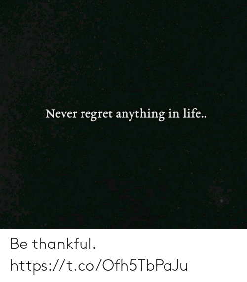 Life, Regret, and Never: Never regret anything in life.. Be thankful. https://t.co/Ofh5TbPaJu