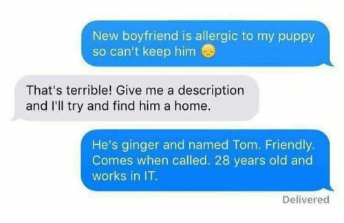 gingerly: New boyfriend is allergic to my puppy  so can't keep him  That's terrible! Give me a description  and I'll try and find him a home  He's ginger and named Tom. Friendly.  Comes when called. 28 years old and  works in IT  Delivered