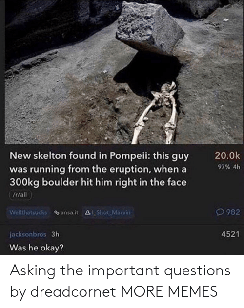 pompeii: New skelton found in Pompeii: this guy  was running from the eruption, when a  300kg boulder hit him right in the face  20.0k  97% 4h  It/all  Welthatsucks ansa.it Shot Marvin  982  4521  jacksonbros 3h  Was he okay? Asking the important questions by dreadcornet MORE MEMES