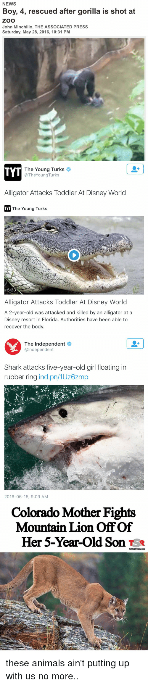 Motheres: NEWS  Boy, 4, rescued after gorilla is shot at  ZOO  John Minchillo, THE ASSOCIATED PRESS  Saturday, May 28, 2016, 10:31 PM   The Young Turks  TYT  @TheYoung Turks  Alligator Attacks Toddler At Disney World  TYT The Young Turks  5:23  Alligator Attacks Toddler At Disney World  A 2-year-old was attacked and killed by an alligator at a  Disney resort in Florida. Authorities have been able to  recover the body.   The Independent  @Independent  Shark attacks five-year-old girl floating in  rubber ring  ind pn/1UZ6Zm  2016-06-15, 9:09 AM   Colorado Mother Fights  Mountain Lion of of  Her 5-Year-old Son TSR  THESHADEROOMCOM these animals ain't putting up with us no more..